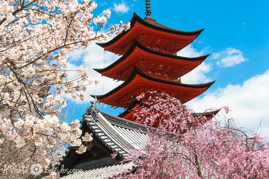 12-monate-12-reiseziele-japan-miyajima