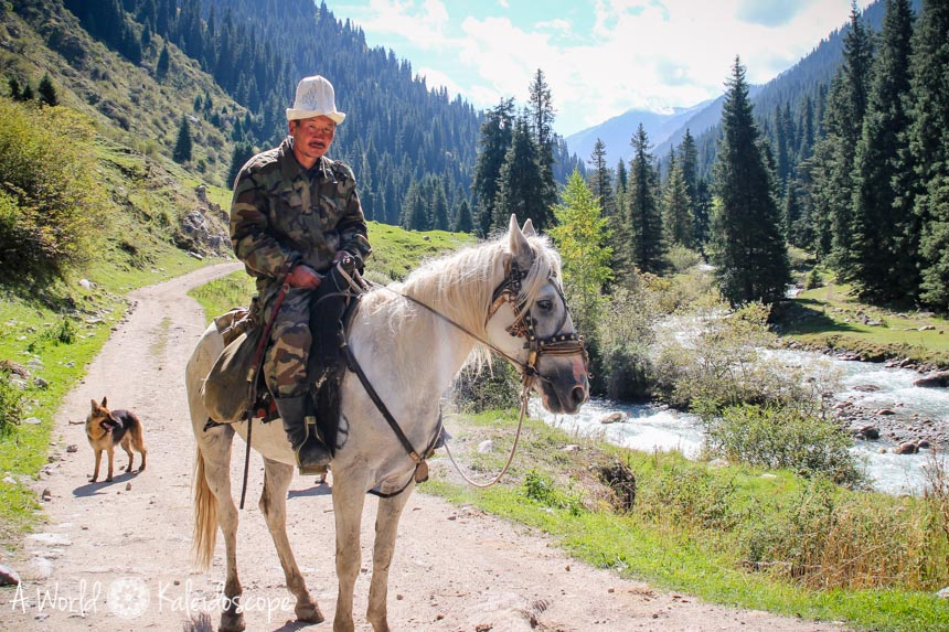 backpacking-in-kirgisistan-horse