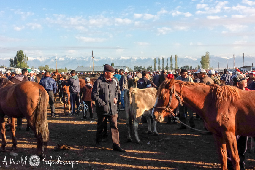 backpacking-in-kirgisistan-karakol-animal-market