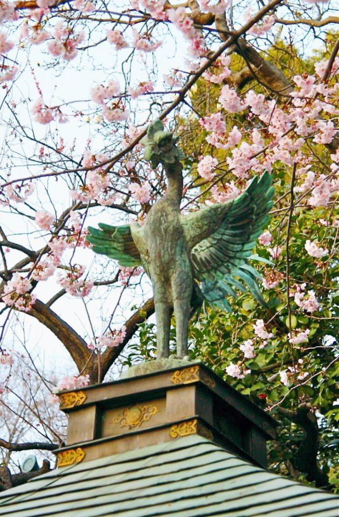 backpacking-japan-kirschblute-reiseroute-tokyo-ueno-park