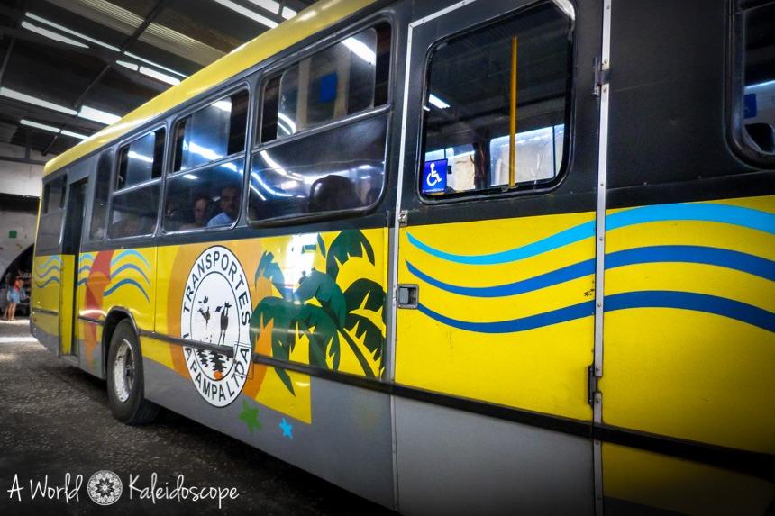 bus_palmen