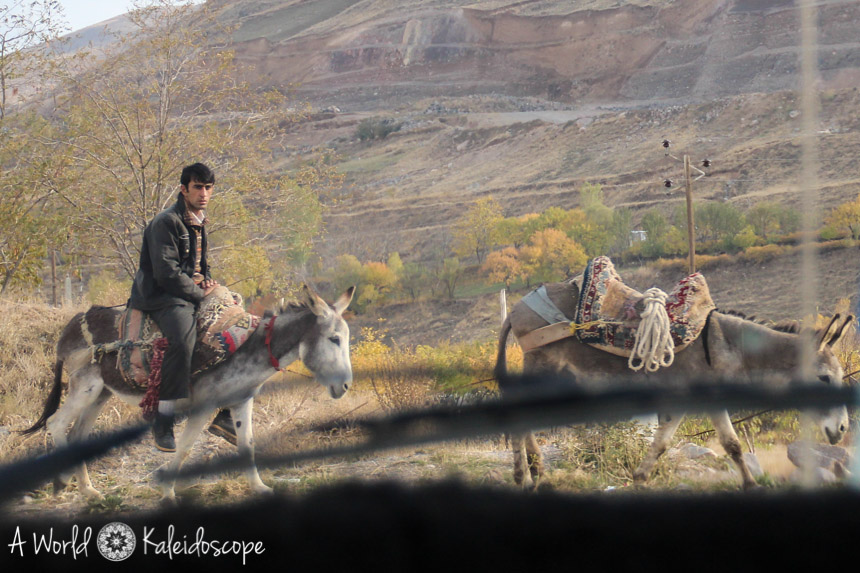iran-backpacking-kandovan-donkey