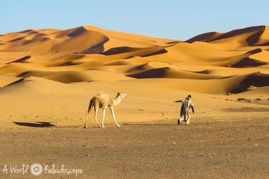marokko_erg_chebbi